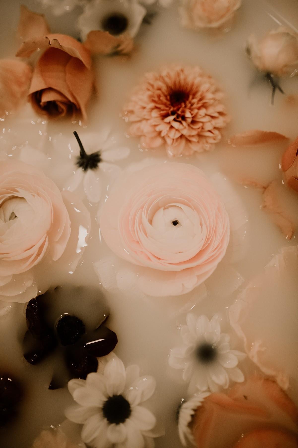 fleurs posées sur l'eau