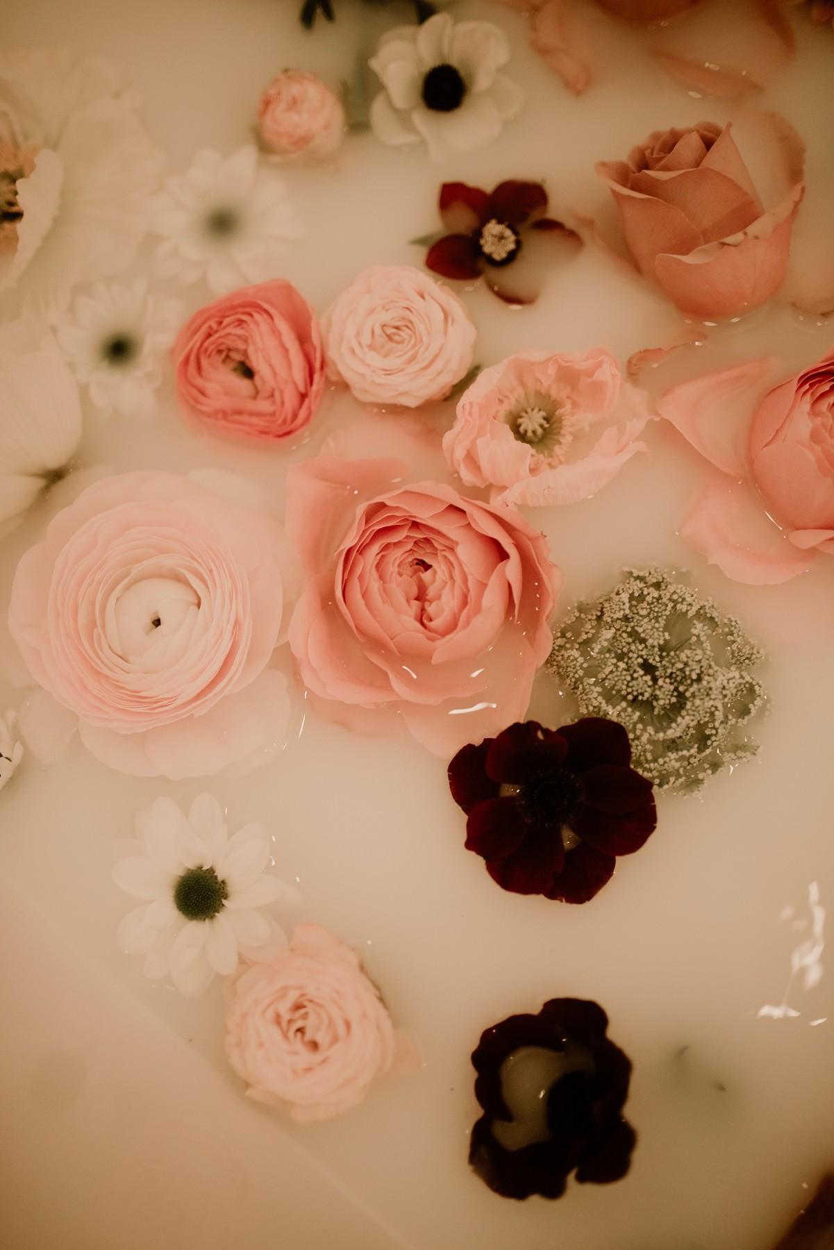 detail des fleurs
